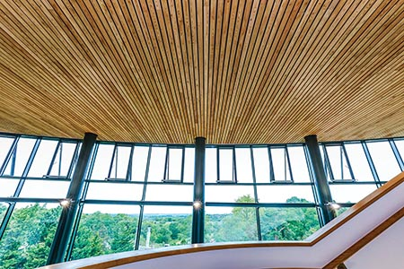 Linear wood ceiling for RNOH's striking atrium